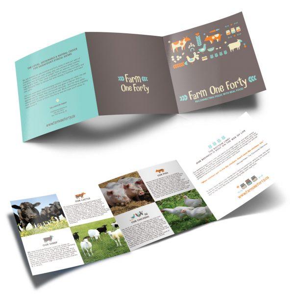 FOF-brochure